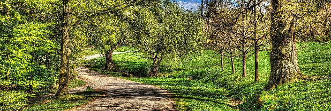 Parks_Germany_Roads_456608